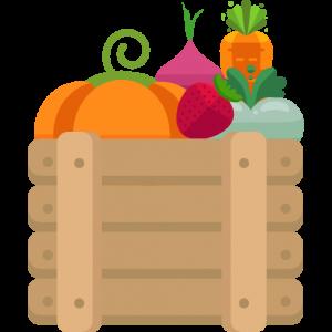 Des légumes dans une caisse